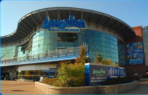 Downtown Aquarium - Denver