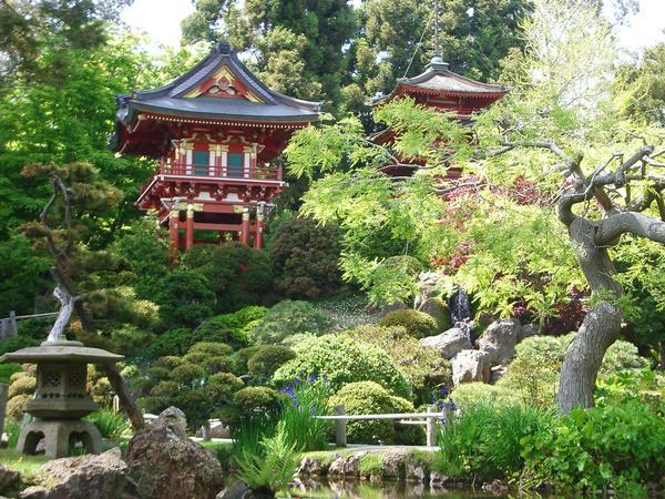 japanese tea garden - Japanese Garden San Francisco